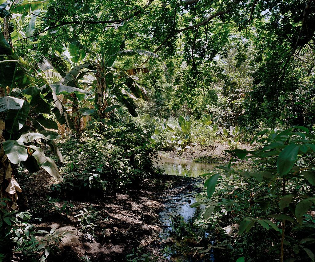 La-isla-de-las-viudas-nicaragua-18.jpg
